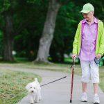 senior woman walking the dog