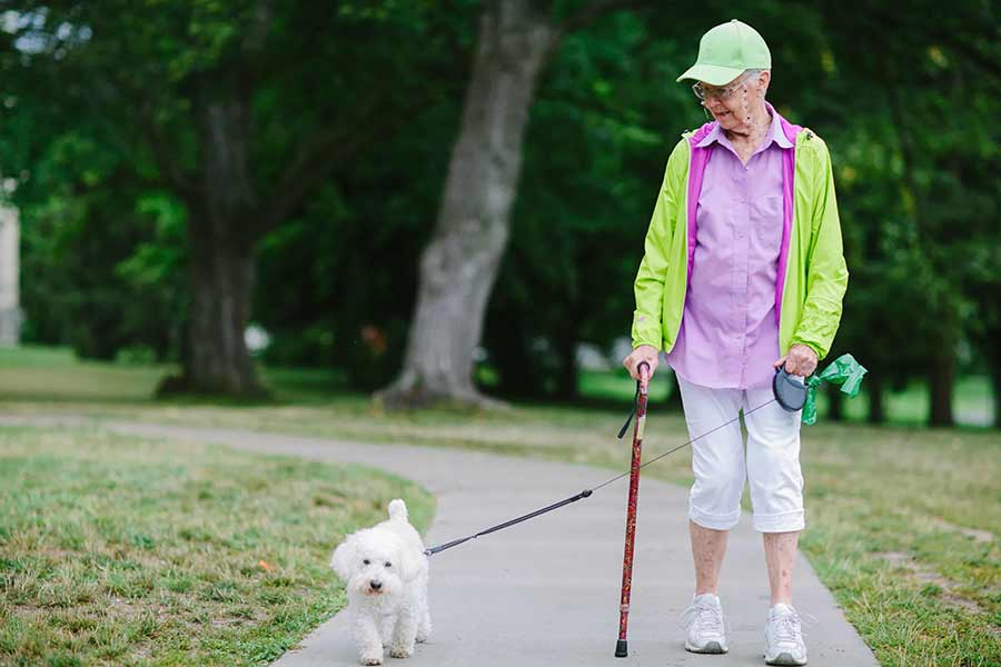 senior woman walking the dog